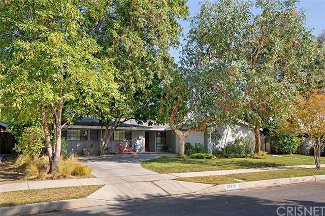 20519 Mandell Street, Winnetka, CA 91306 (#SR19244964) :: The Parsons Team