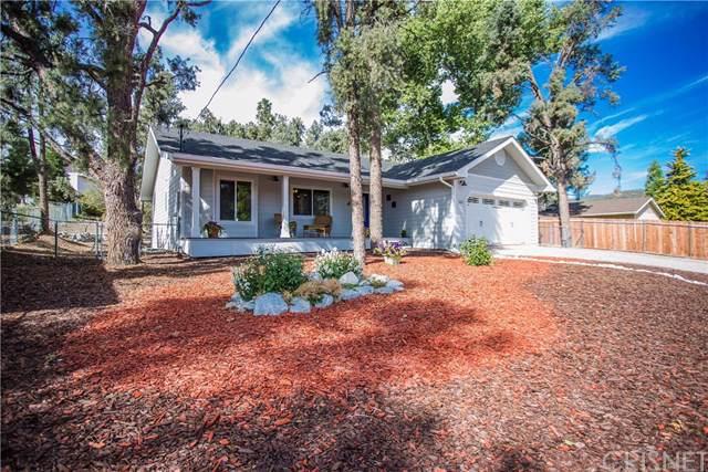 1113 Lion Lane, Frazier Park, CA 93225 (#SR19244801) :: Berkshire Hathaway Home Services California Properties