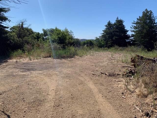 5 Pfeiffer Ridge Road - Photo 1
