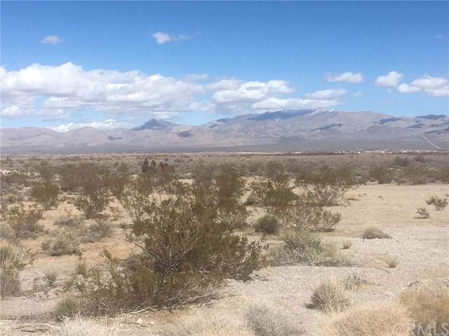 0 Long Road, Outside Area (Inside Ca), CA 92389 (#EV19176505) :: Sperry Residential Group