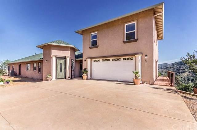 235 Via De La Cruz Way, Chico, CA 95973 (#SN19244709) :: The Laffins Real Estate Team