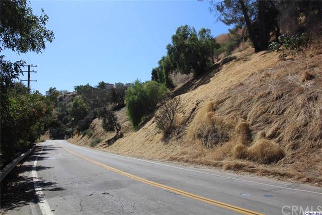0 Kagel Canyon, Kagel Canyon, CA 91342 (#319004114) :: Sperry Residential Group