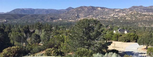 48 Lot, Mountain Center, CA 92561 (#SW19246443) :: Sperry Residential Group