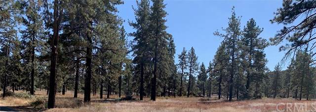 21-22 Lot, Mountain Center, CA 92561 (#SW19246481) :: Sperry Residential Group