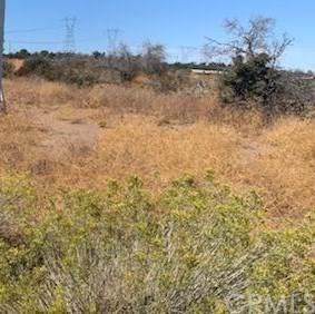 7878 Arrowhead Road, Phelan, CA 92371 (MLS #CV19244414) :: Desert Area Homes For Sale