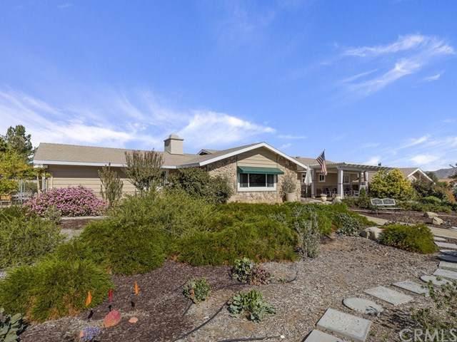 1183 Fetlock Way, Riverside, CA 92506 (#IV19246662) :: Keller Williams Realty, LA Harbor