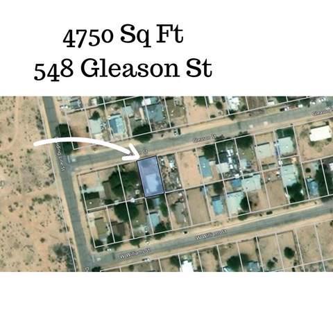 548 Gleason Street, Yermo, CA 92398 (#517584) :: Veléz & Associates
