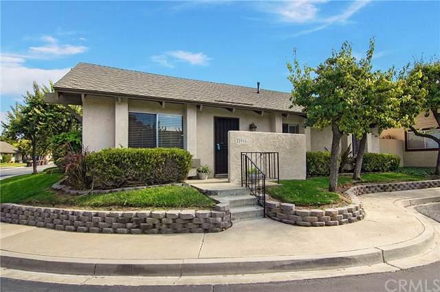 22916 Avenida Valverde #7, Laguna Hills, CA 92653 (#OC19247102) :: The Laffins Real Estate Team