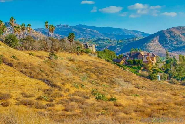 4135 Vista Bonita Ln, Escondido, CA 92025 (#190057526) :: Keller Williams Realty, LA Harbor