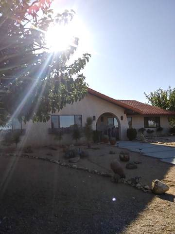 58461 Joshua Lane, Yucca Valley, CA 92284 (#219032135PS) :: The Laffins Real Estate Team