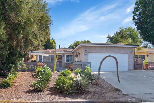 443 Concepcion Ave, Spring Valley, CA 91977 (#190057538) :: Powerhouse Real Estate