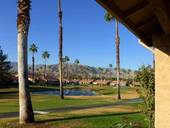 163 Camino Arroyo, Palm Desert, CA 92260 (#219032175DA) :: J1 Realty Group
