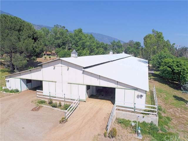 1039 Greenwood Avenue, San Bernardino, CA 92407 (#EV19245412) :: The Marelly Group | Compass