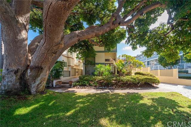 712 S Broadway C, Redondo Beach, CA 90277 (#SB19247412) :: The Brad Korb Real Estate Group