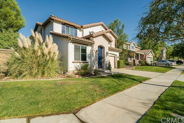 32072 Meadow Wood Lane, Lake Elsinore, CA 92532 (#SW19247634) :: A|G Amaya Group Real Estate