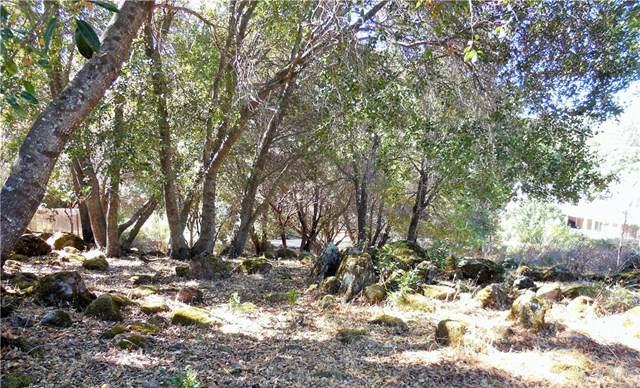 10631 Edgewater Drive, Kelseyville, CA 95451 (#LC19247549) :: Faye Bashar & Associates