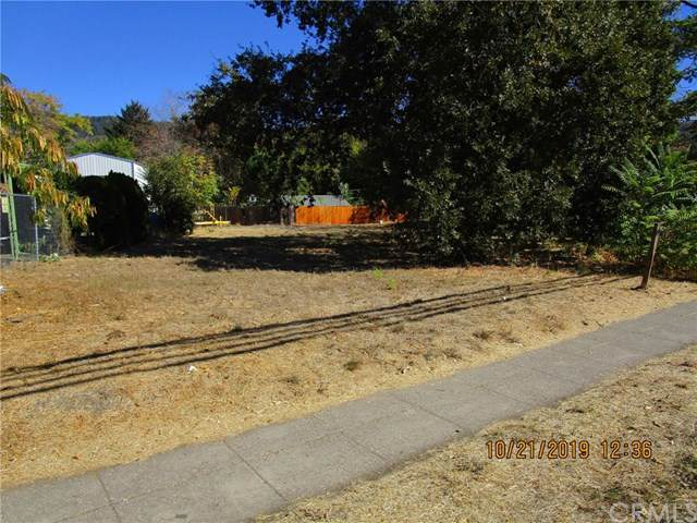 6210 E State Hwy 20, Lucerne, CA 95458 (#LC19248036) :: J1 Realty Group