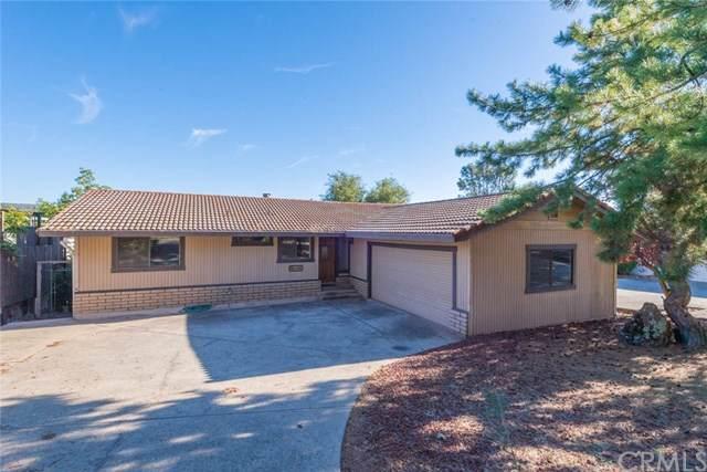 5318 Treasure Hill Drive, Oroville, CA 95966 (#SN19248639) :: Provident Real Estate