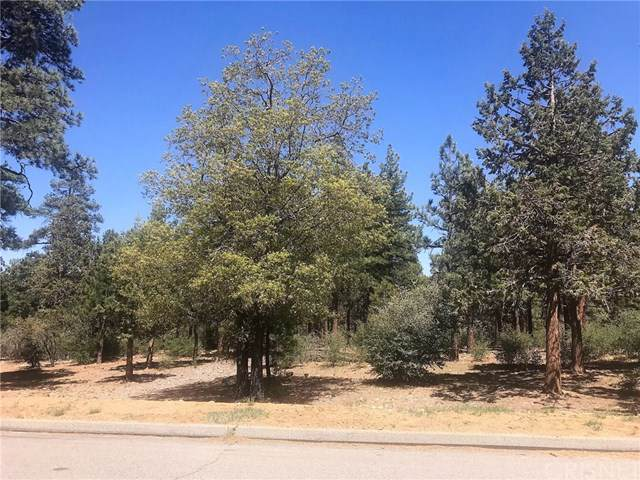 0 Cedar Glen Drive, Big Bear, CA 92314 (#SR19248903) :: The Houston Team | Compass