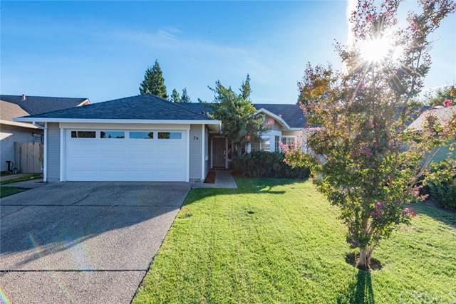 29 Delaware Drive, Chico, CA 95973 (#SN19248319) :: Provident Real Estate