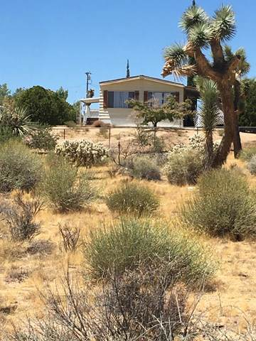 3630 Valley Vista Avenue, Yucca Valley, CA 92284 (#219032283DA) :: J1 Realty Group