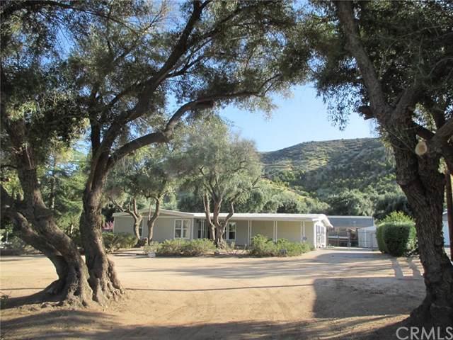 20765 Alameda Del Monte, Wildomar, CA 92595 (#SW19249136) :: RE/MAX Estate Properties