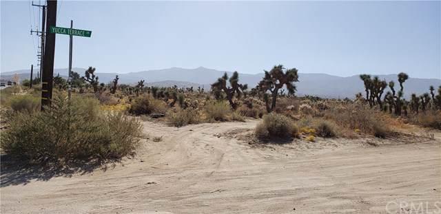 0 Yucca Terrace Drive, Phelan, CA  (#CV19249279) :: The Danae Aballi Team