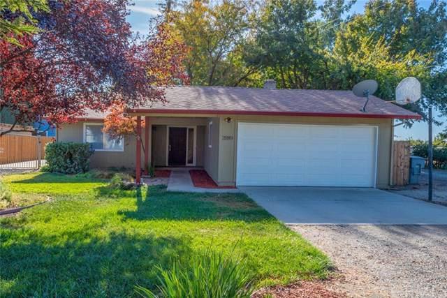 3989 Front Street, Dayton, CA 95928 (#SN19249498) :: RE/MAX Estate Properties