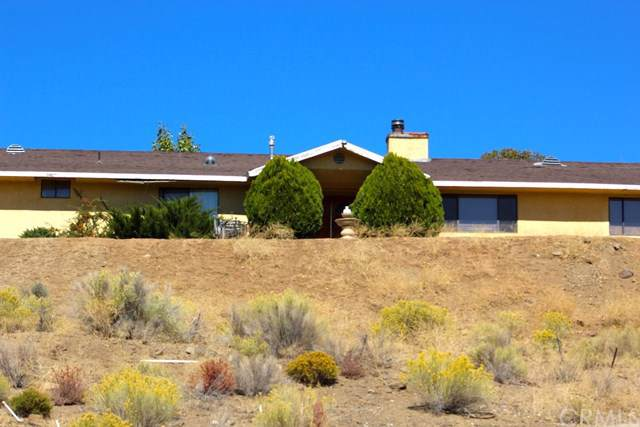 11801 Pasture Avenue, Tehachapi, CA 93561 (#SB19250521) :: J1 Realty Group