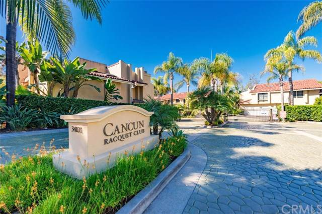 34101 Via California #2, San Juan Capistrano, CA 92675 (#OC19250512) :: Z Team OC Real Estate