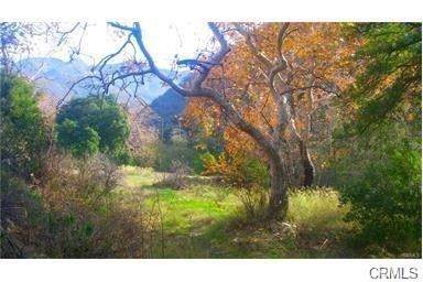 30841 Silverado Canyon Road, Silverado Canyon, CA 92676 (#OC19251173) :: Z Team OC Real Estate