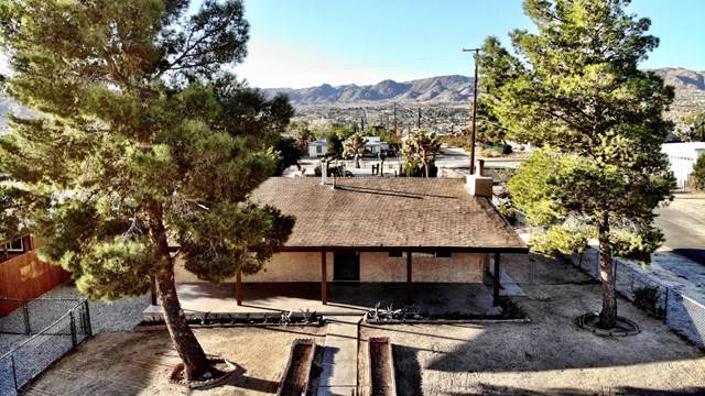 61807 Hilltop Drive, Joshua Tree, CA 92252 (#219032538PS) :: Sperry Residential Group