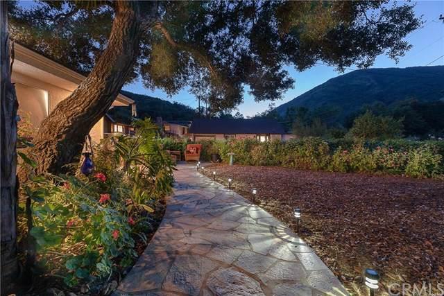 14882 Wildcat Canyon Road, Silverado Canyon, CA 92676 (#OC19248307) :: J1 Realty Group