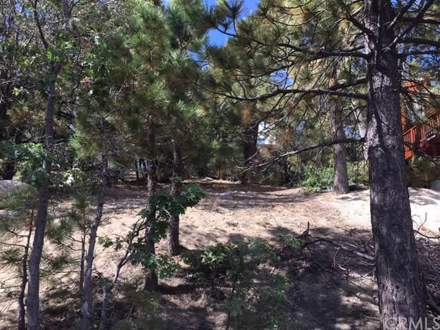 0 Piedras Grandes, Green Valley Lake, CA 92341 (#LG19209823) :: Crudo & Associates