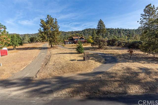 5221 Chowchilla Mountain Road, Mariposa, CA 95338 (#FR19253647) :: RE/MAX Innovations -The Wilson Group