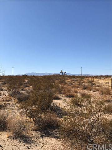6 Milky Way Avenue, Joshua Tree, CA 92252 (#JT19254811) :: Go Gabby