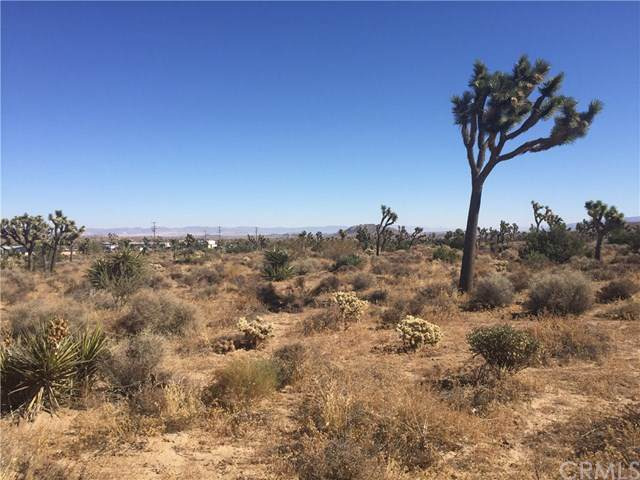 0 Grand Ave., Yucca Valley, CA  (#JT19255421) :: RE/MAX Masters