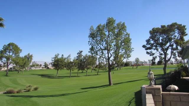 38948 Moronga Canyon Drive, Palm Desert, CA 92260 (#219033035DA) :: Cal American Realty