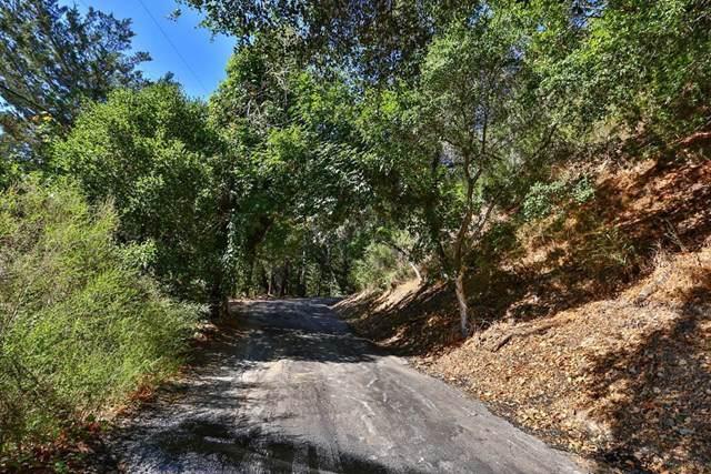275 Sugarloaf Road - Photo 1