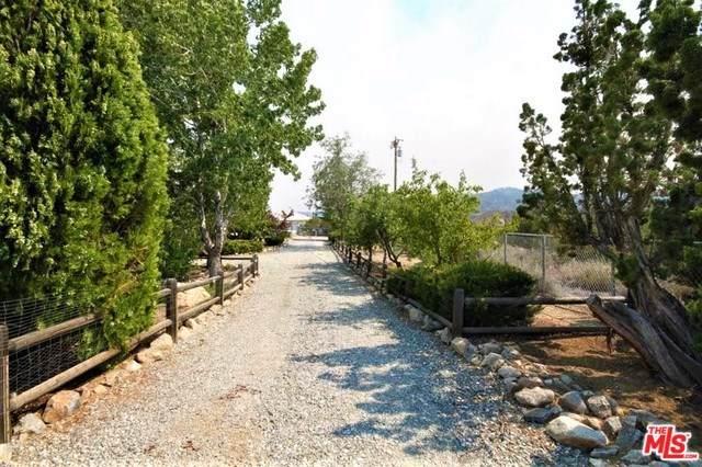 1074 Tamarack Road, Pinon Hills, CA 92372 (#19526824) :: Millman Team