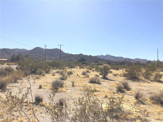6740 Sierra Avenue, Joshua Tree, CA 92252 (#JT19257560) :: Legacy 15 Real Estate Brokers
