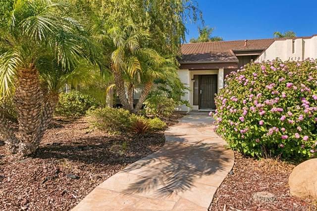 1610 Tucker Lane, Encinitas, CA 92024 (#190060031) :: Legacy 15 Real Estate Brokers