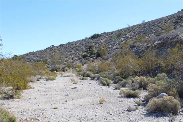 22 Samel, Morongo Valley, CA  (#JT19258983) :: Sperry Residential Group
