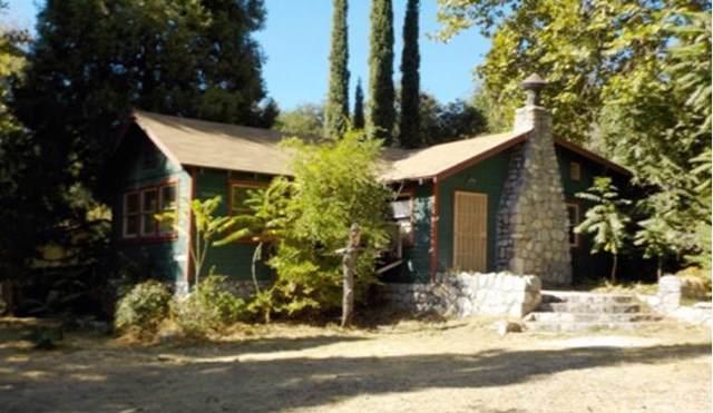 37010 Sycamore Drive, Mentone, CA 92359 (#IV19259118) :: J1 Realty Group