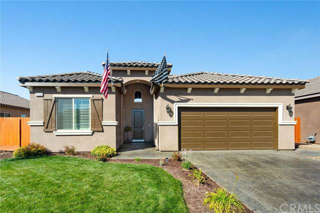 296 S Wolftrap, Madera, CA 93637 (#FR19259460) :: Legacy 15 Real Estate Brokers