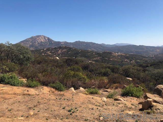 0 Leoney Ct, Jamul, CA 91935 (#190060217) :: Steele Canyon Realty