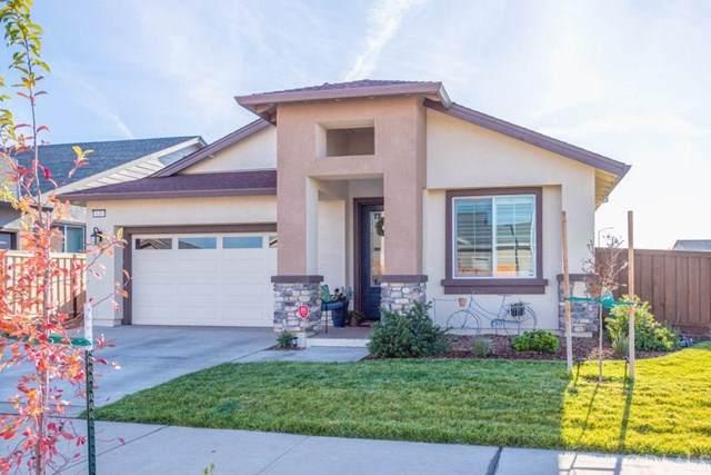 633 Hayfork Creek Terrace, Chico, CA 95973 (#SN19259494) :: The Laffins Real Estate Team
