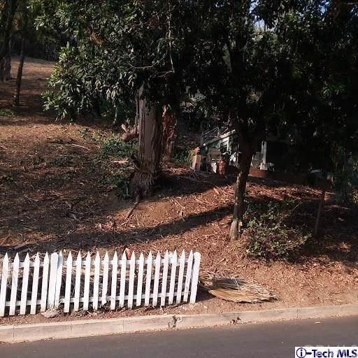 4573 Jessica Drive, Mount Washington, CA 90065 (#319004450) :: J1 Realty Group