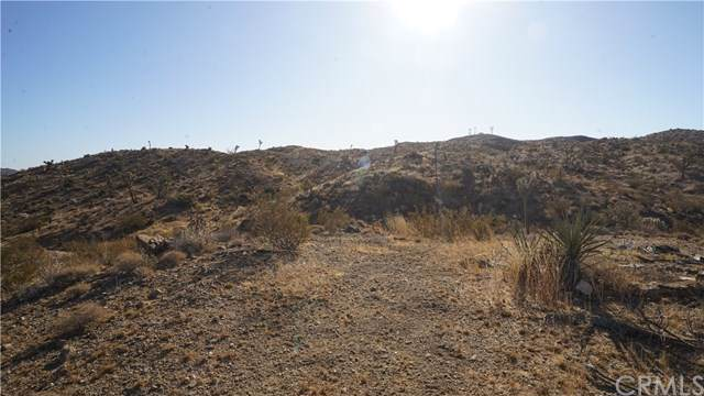 58175 Aurora Drive, Yucca Valley, CA 92284 (#JT19260716) :: Sperry Residential Group