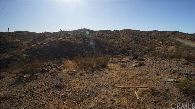 58205 Aurora Drive, Yucca Valley, CA 92284 (#JT19260739) :: Sperry Residential Group